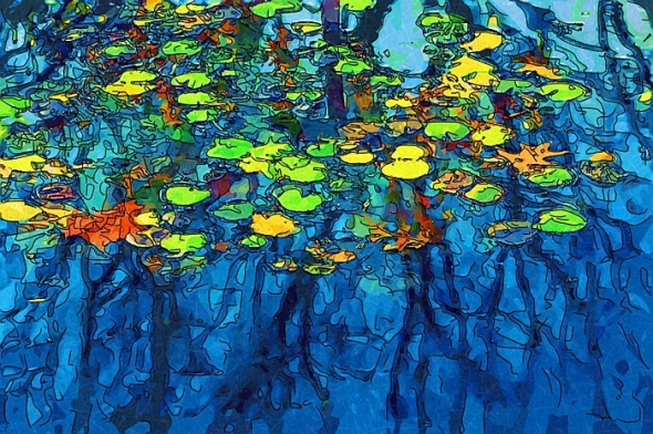 Water LiliesMJ